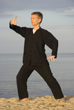 tai chi - posture ward-off poster