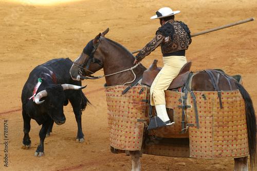 In de dag Stierenvechten bullfighting in sevilla
