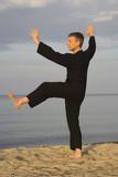 tai chi - posture kick with left heel poster