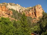 red cliffs, oak creek canyon poster
