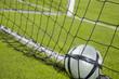 score your goal