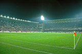 crowded stadium - 795132