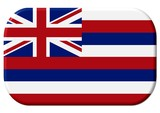 hawaii flagge symbol poster