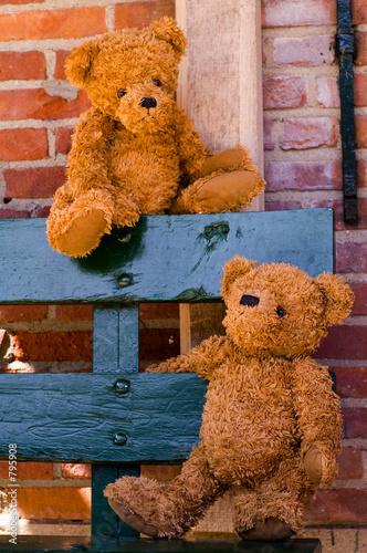 cute teddybear couple