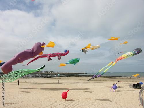cerf-volant - 801350
