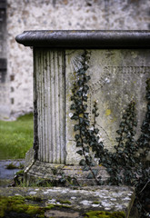 churchyard tomb and ivy 1