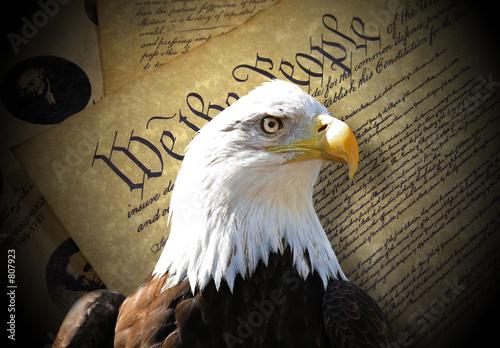 Foto op Plexiglas Eagle eagle