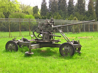 cannon on the grass