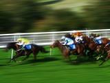horse race - Fine Art prints