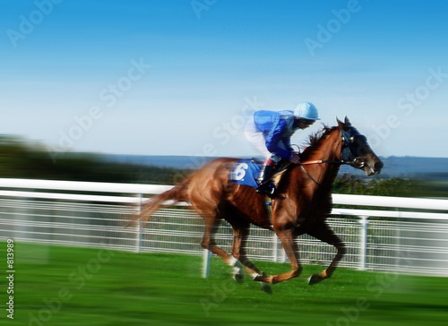 horse racing - 813989
