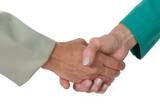 business women handshake 2 poster