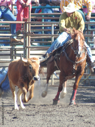 Staande foto Stierenvechten steer wrestlers