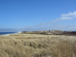 dunes of sylt