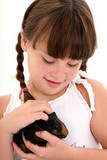 child with pet guinea pig poster
