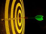 target 2 - 840102