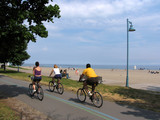 beachfront cyclists poster