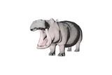 pencil sketch hippo poster