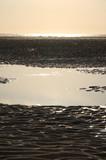 plage de berck sur mer au couché de soleil poster