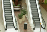 living in escalators poster