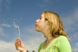 girl blowing dandelion poster