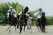 Fototapeten,polo,pferd,pferd,spielenleiter