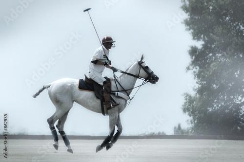 Fotobehang Paardrijden polo