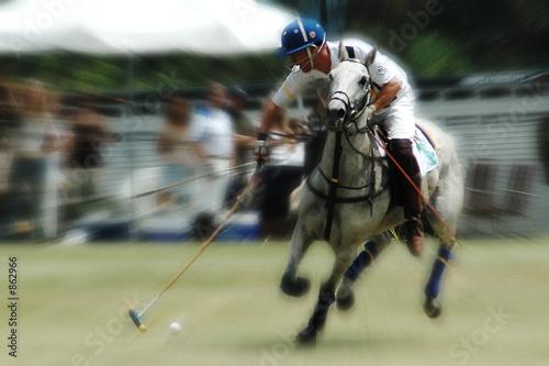 Papiers peints Equestre polo player