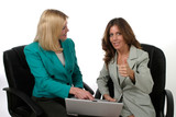 two business women working on laptop 11 poster