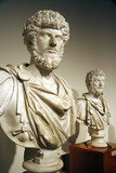 marble busts of roman emperors poster