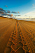 canvas print picture road on the beach