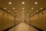 tunnel of lights - 875157