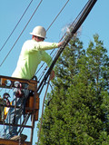 lineman,  power, electricity poster