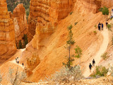 bryce canyon trail with hikers poster