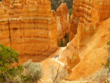 bryce canyon hikers poster