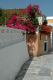 greek island street scene poster