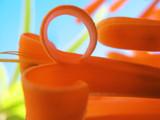détail de liane de feu, couleurs orange,bleu,vert poster