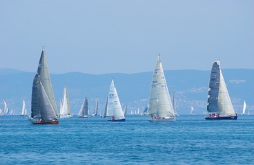 sail-boats on regatta no.2