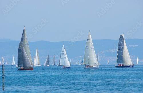 Fototapeta sail-boats on regatta no.2
