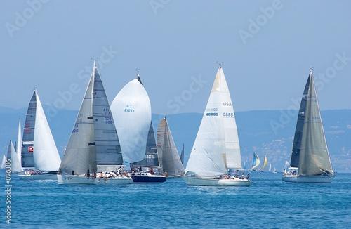 Fototapeta sail-boats