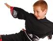 karate kid 12