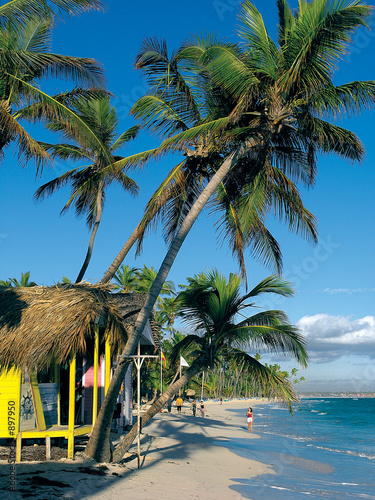 canvas print picture bavaro beach