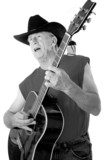 old time country musician two poster