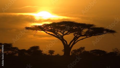 Leinwandbild Motiv classic sunrise
