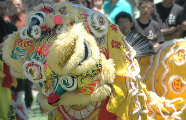 dancer in dragon costume