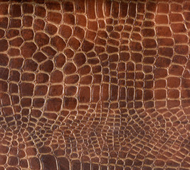 kroko leather detail