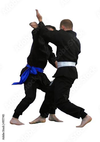 arts martiaux 6
