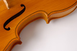 violin curves poster