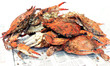 crab - cooked blue crabs - 919776