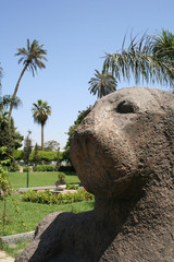 ancient egyptian lion statue