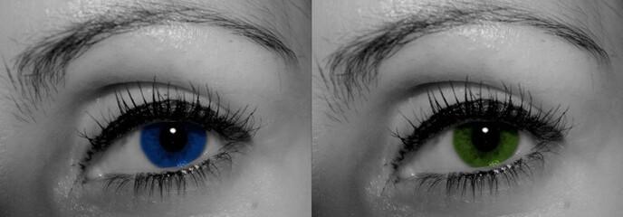 oeil bleu et vert